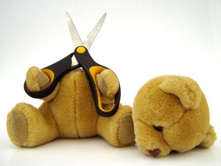 suicide-bear